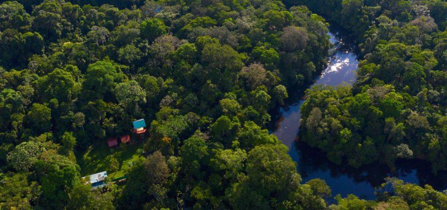 Погружение в джунгли Куйябено