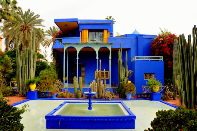 Marocco_Marrakech_Majorelle garden_cacti
