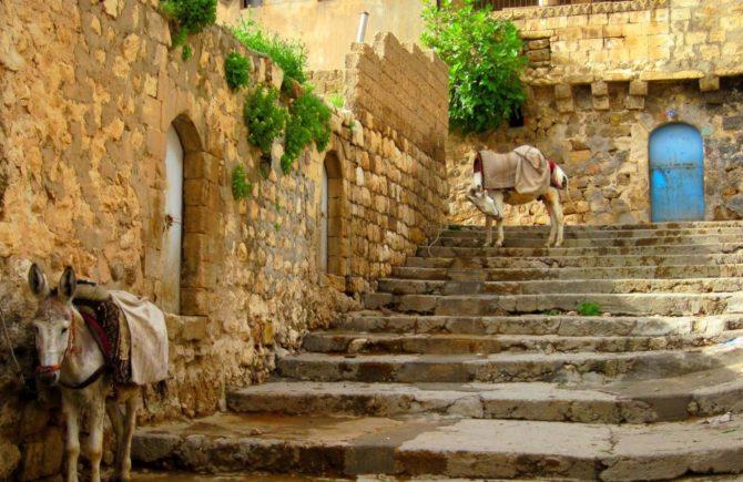 Turkey-Mardin-Mesopotamia (3)