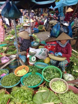 vietnam-november-2016-5-day (5)
