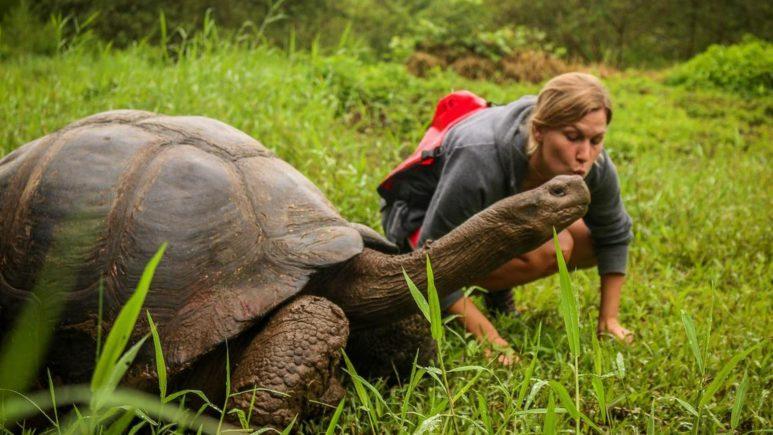 Бегаем за черепахами на Санта Круз