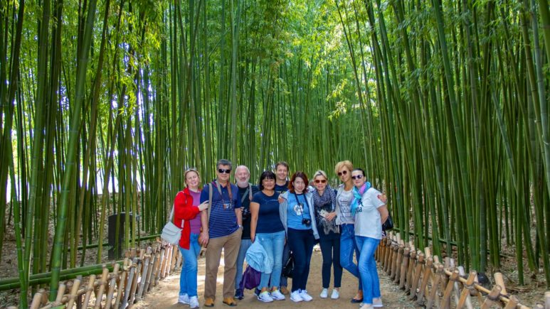 south-korea-busan-taehwagang-bamboo-forest (2)