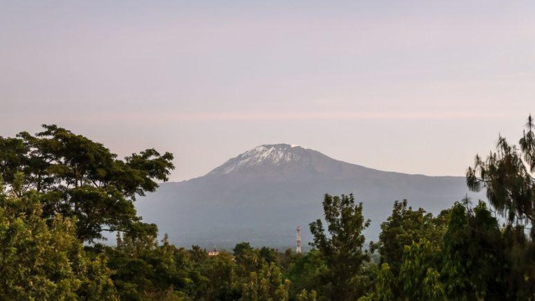 Треккинг у подножия Килиманджаро