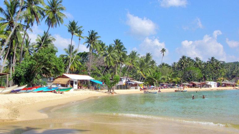 Пляжная Шри-Ланка или Мальдивы по желанию